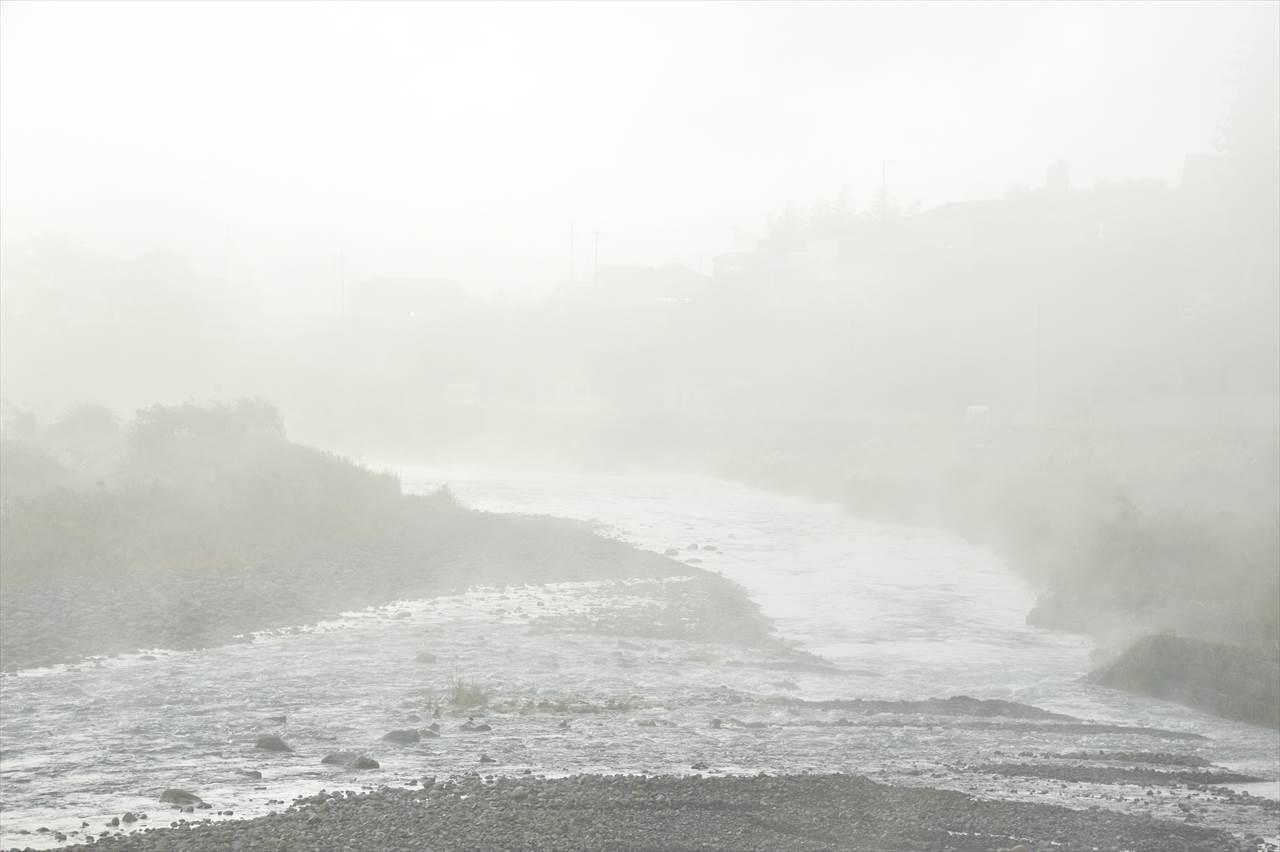 朝霧の近露