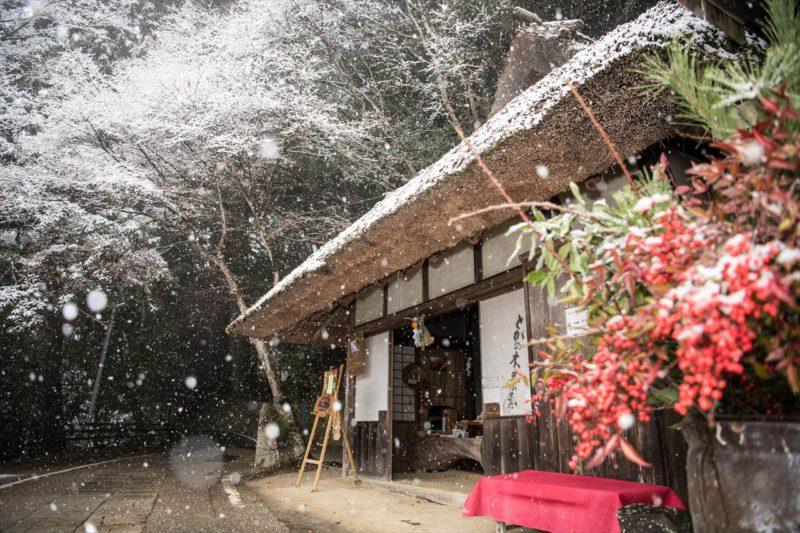 雪のとがの木茶屋