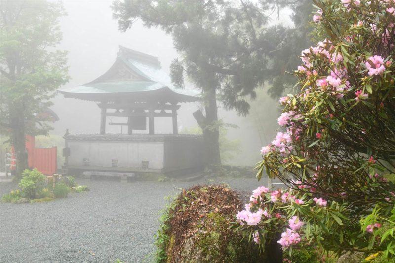 霧の阿弥陀寺