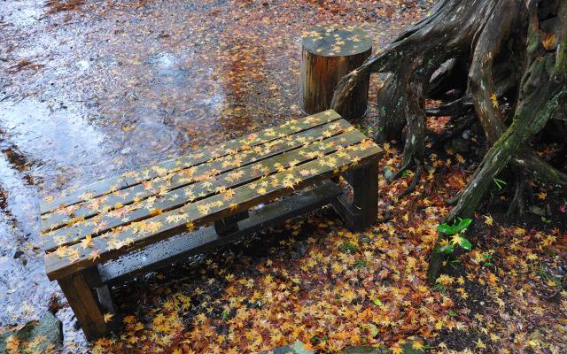 Season · Weather